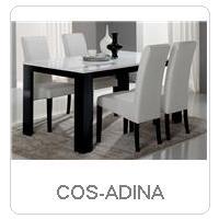 COS-ADINA